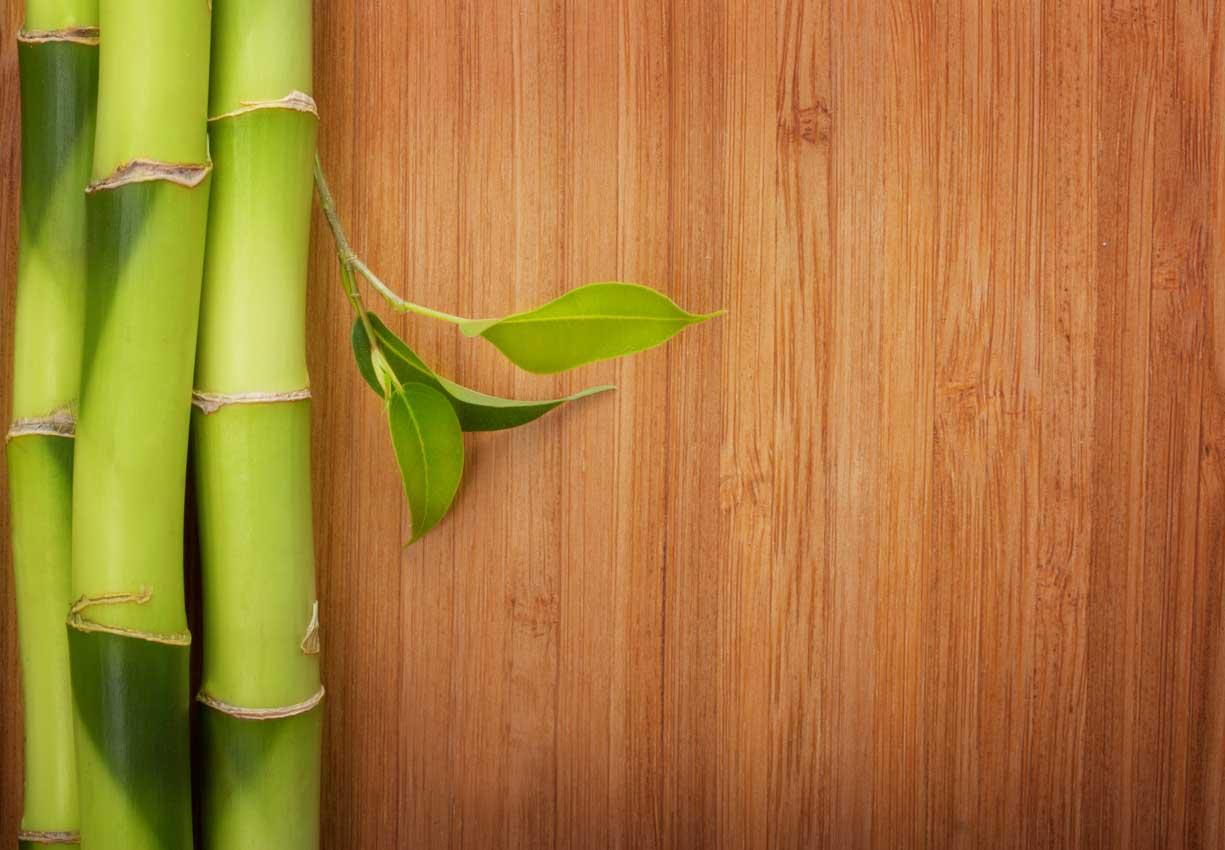 Bamboo-Floring-Blog